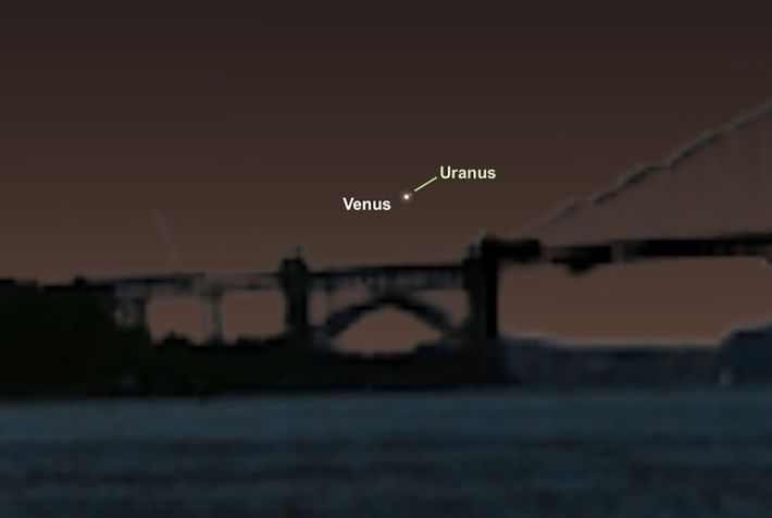 La brillante Vénus vous servira de guide pour repérer la discrète Uranus le 28 mars.