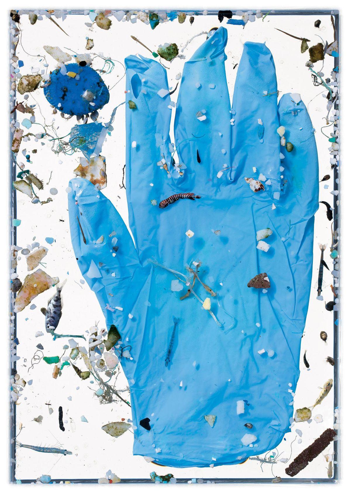 Le gant bleu n'est pas resté suffisamment longtemps dans l'eau pour connaître le même sort que ...