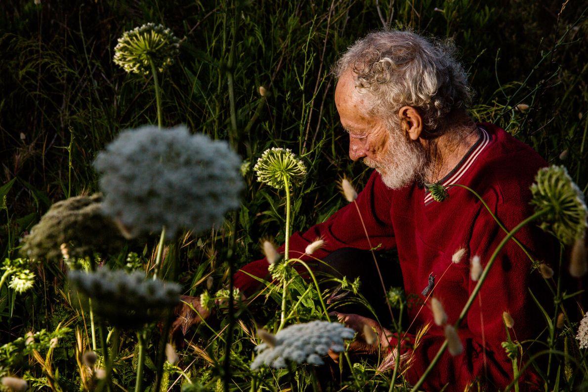 Morandi cueille des herbes derrière sa maison. Un ami livre des produits alimentaires sur l'île toutes ...