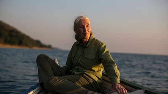 """Image tirée du documentaire """"Jane, un message d'espoir"""", diffusé le 22 avril à 21h sur National ..."""