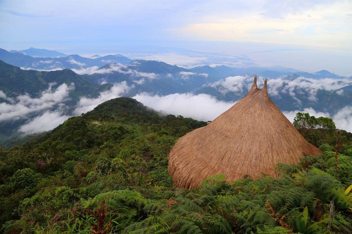 Situé dans le nord-ouest de l'Amazonie colombienne, le parc national de Chiribiquete est la plus grande ...