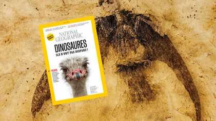 Sommaire du magazine National Geographic de mai 2018 : Dinosaures, ils n'ont pas disparu !