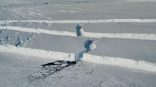 Des canyons de glace ondulants délimitent les bords du nouvel iceberg baptisé B-46 alors qu'il se ...