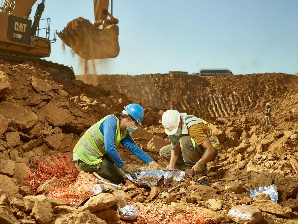 Espagne : la décharge de CanMata, véritable mine d'or paléontologique