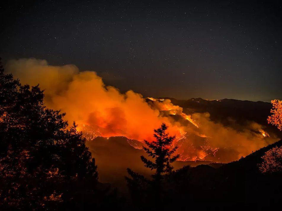 Feux de forêt : de quoi est chargée cette fumée toxique ?
