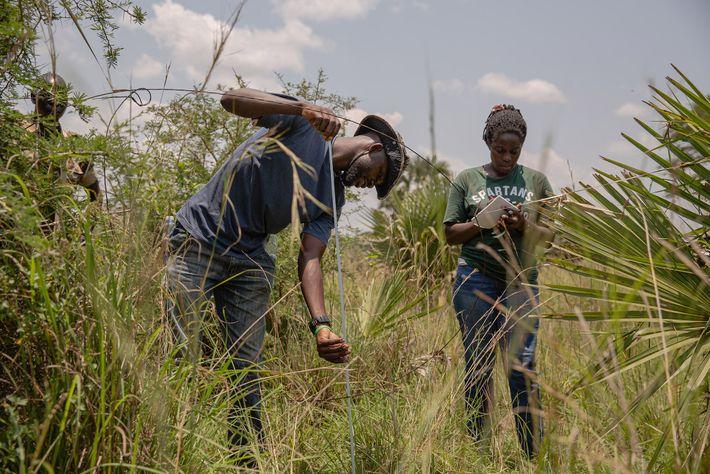 Membres du programme Snares to Wares, Luhonda Peter et Sophia Jingo mesurent le diamètre d'un collet ...