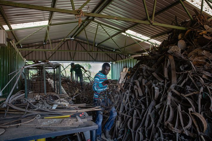 Les employés de Snares to Wares trient les pièges stockés dans un bâtiment de l'Uganda Wildlife ...