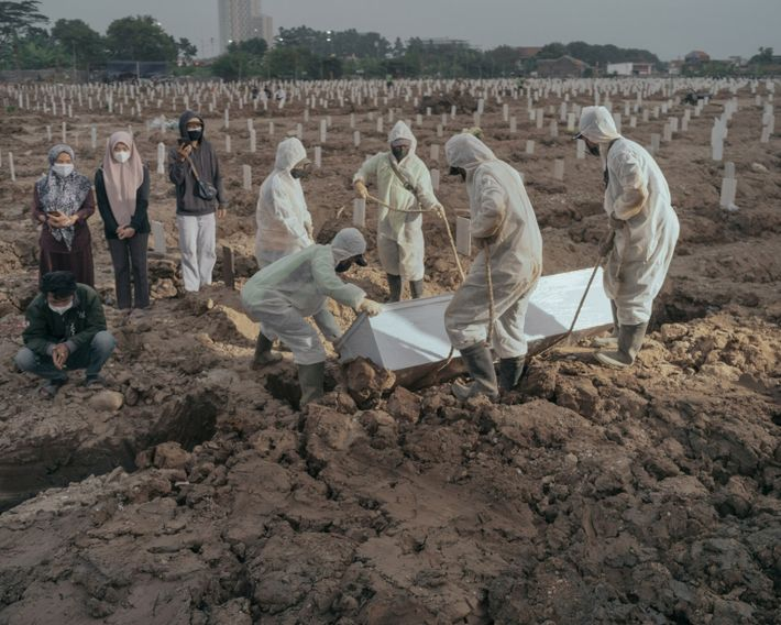 Des fossoyeurs descendent le cercueil d'une victime de la COVID-19 dans sa tombe du cimetière public ...