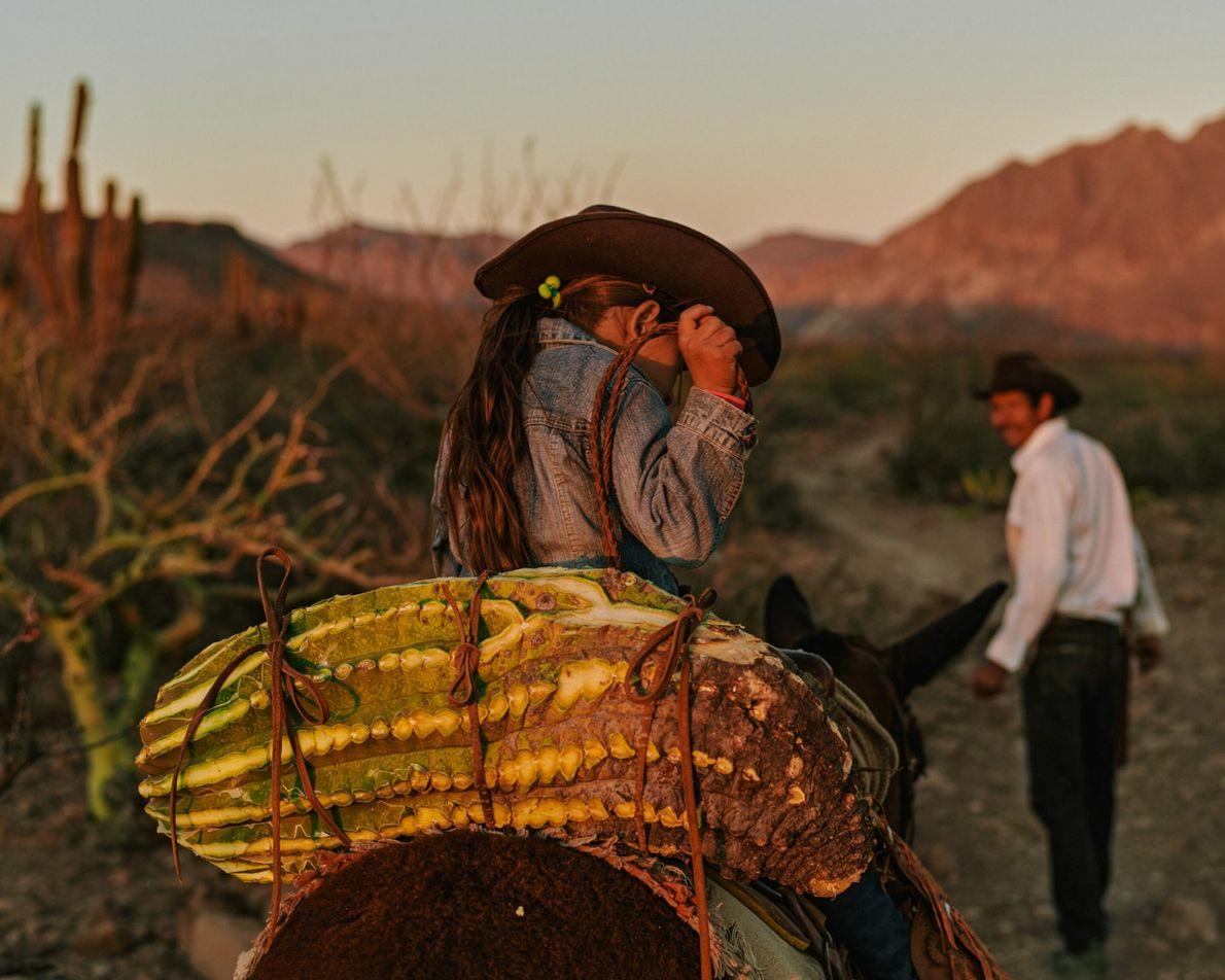 Nary et sa fille Guadalupe récoltent un cactus tonneau pour nourrir les mules et les chevaux ...