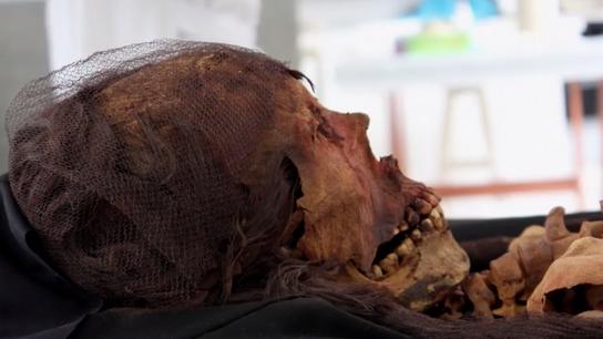 Comment redonner vie à une momie de 1600 ans.