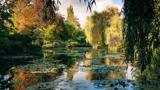 Claude Monet a créé ce jardin à Giverny ; c'est là qu'il a trouvé l'inspiration pour ...