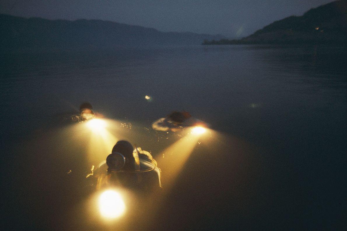 Des plongeurs traînent un appât contenant du sang de vache à travers le Loch Ness en ...