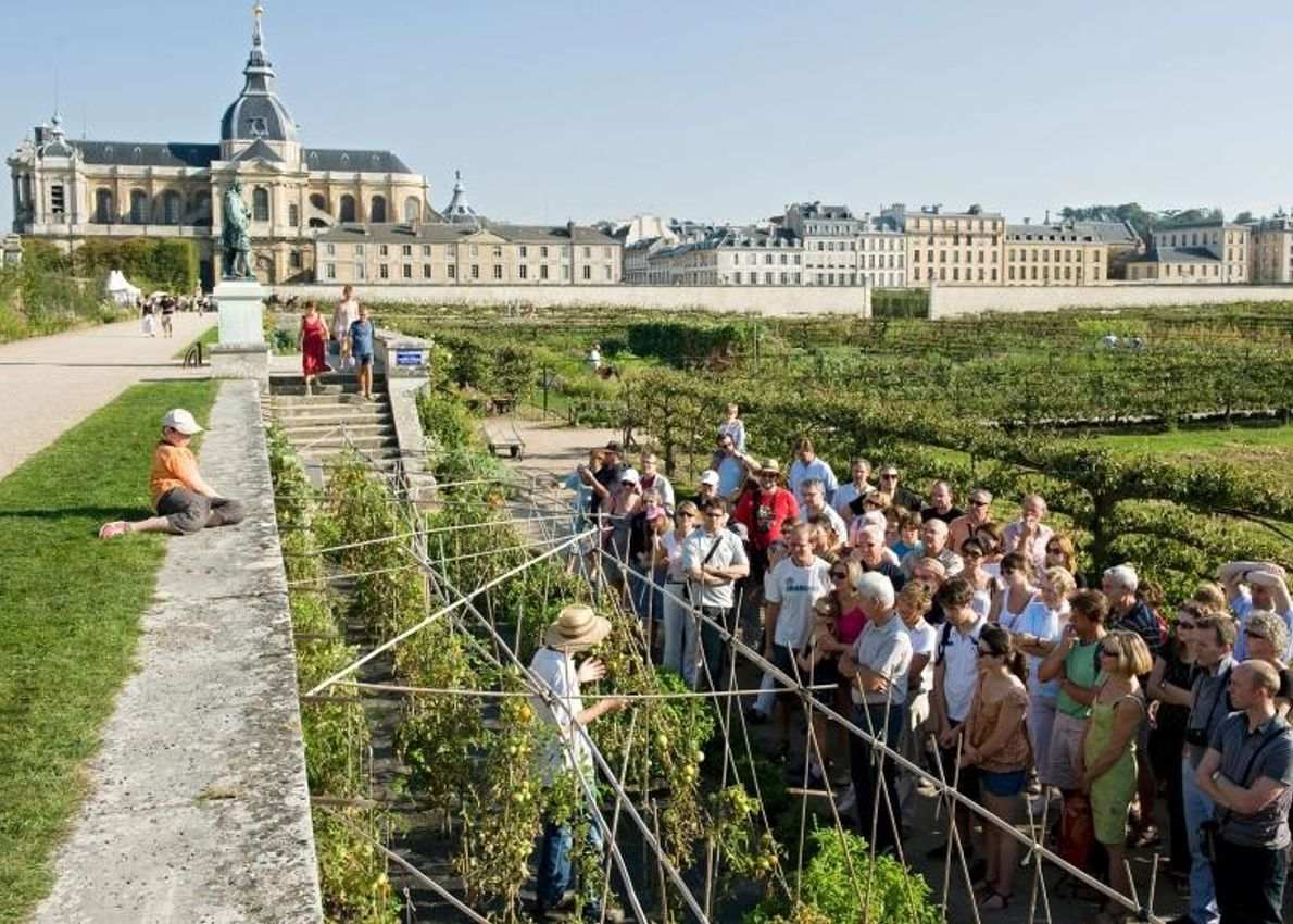 Le potager du roi se trouve à proximité du château de Versailles et produisait des légumes ...