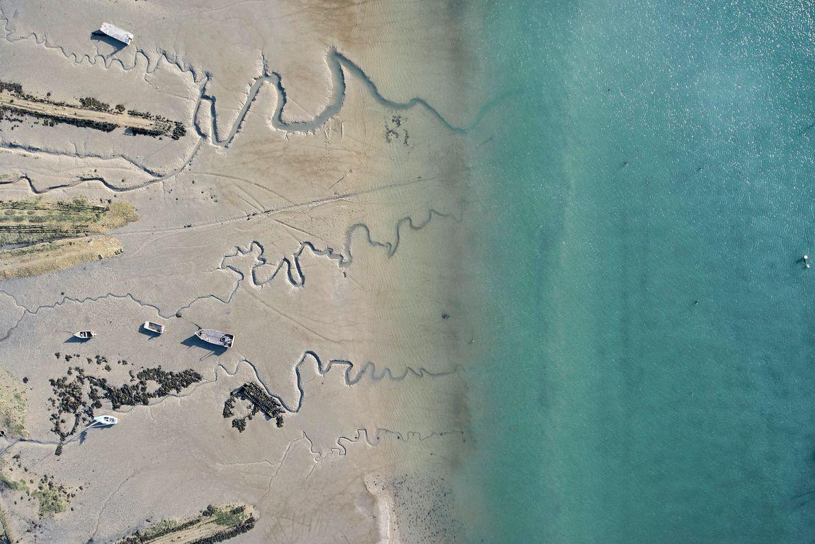 LE MORBIHAN : DES HUÎTRES ET DES HOMMES.  Les champs ostréicoles font partie des paysages du golfe du ...