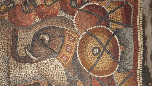 Découverte d'une ancienne mosaïque