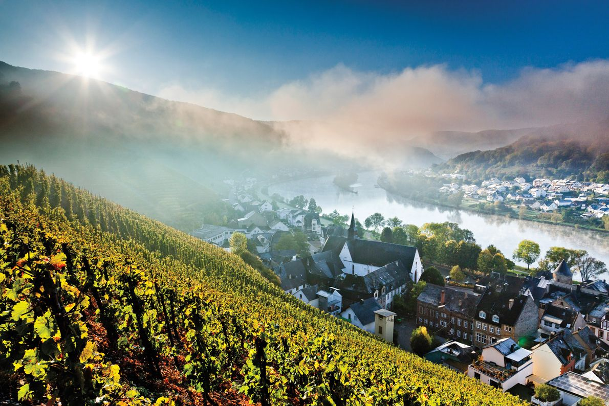 Moselle River Valley, Western Europe