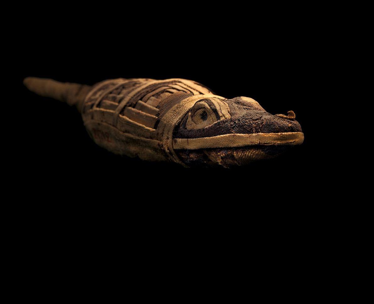 Les momies votives, chacune enterrée avec une prière, sont d'une diversité infinie et ne sont pas ...