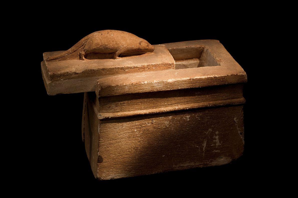 La sculpture d'une musaraigne sur ce minuscule cercueil de pierre identifie avec précision le locataire.