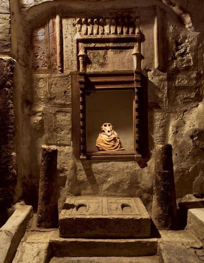 Pendant les périodes grecque et romaine, certains animaux étaient considérés comme sacrés et associés aux divinités. ...