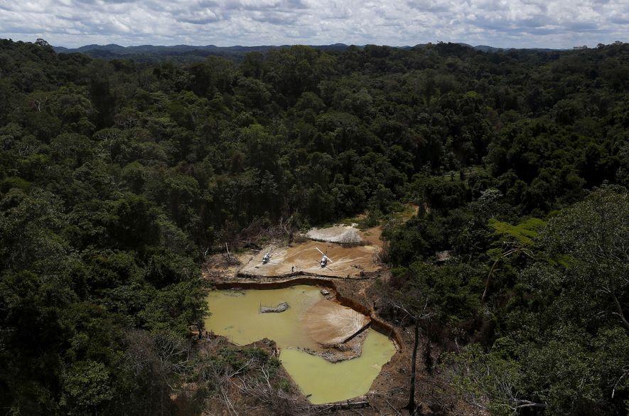 Les cicatrices laissées par une exploitation minière illégale découverte en 2016 sur le territoire indigène des ...