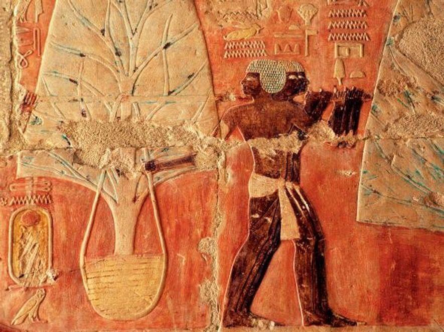 La myrrhe était utilisée pour oindre le corps du défunt pendant le processus de momification. Ce ...