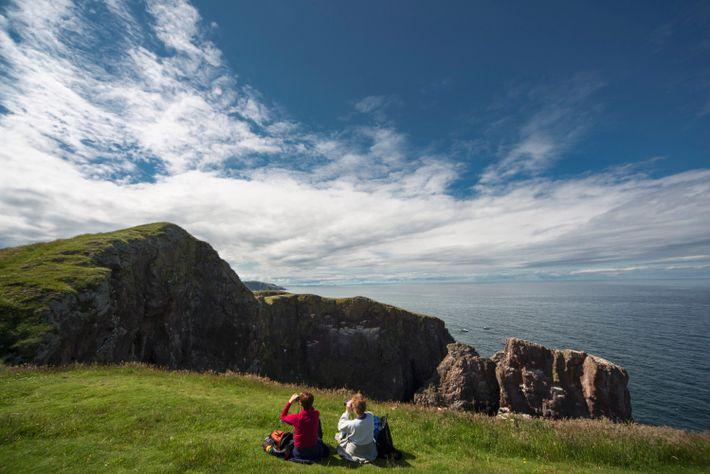 Les falaises vertigineuses et les immenses colonies d'oiseaux marins contribuent à faire de St Abbs Head ...