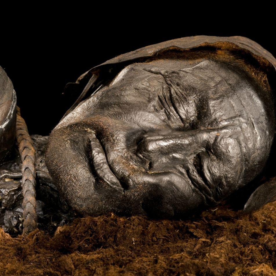 Le dernier repas de l'homme de Tollund a été reconstitué 2400 ans après sa mort
