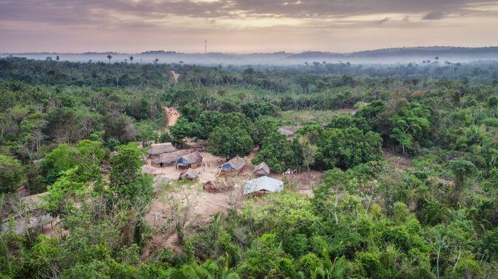 Vu d'en haut, Posto Awá est un des cinq avant-postes créés par la FUNAI dans trois ...