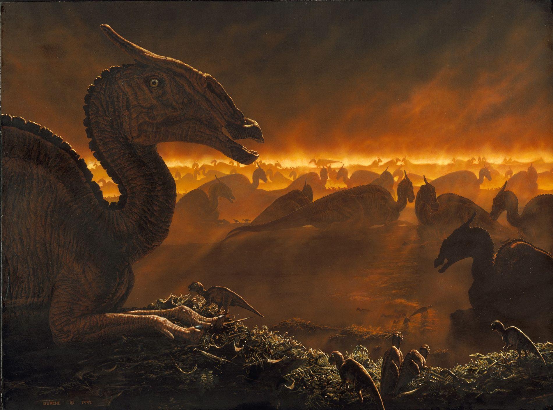 Des Saurolophus de Mongolie se rassemblent à la tombée de la nuit, enveloppés dans la brume ...
