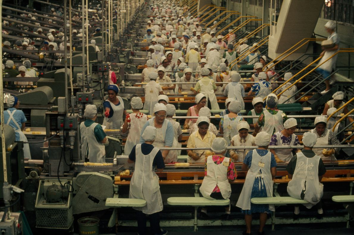 Rythme d'usine