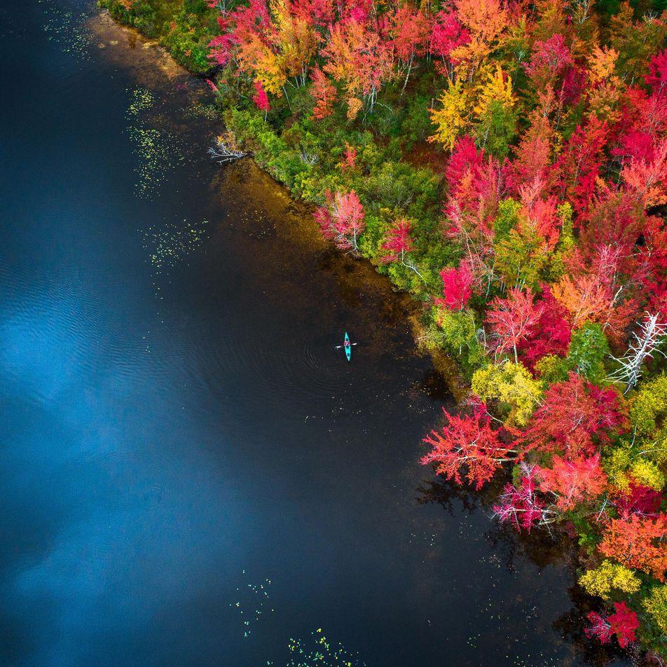 Les splendides couleurs de l'automne vues du ciel