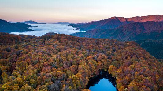 Les mille et unes couleurs de l'automne vues par les drones