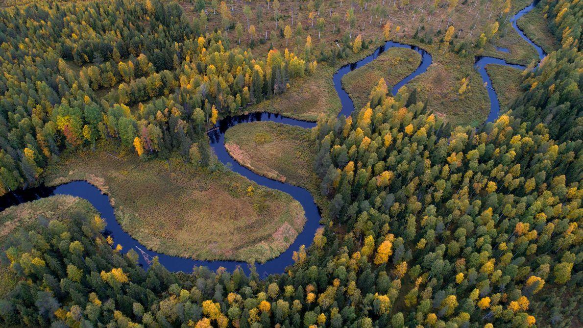 « Suède. Seul face à la nature »