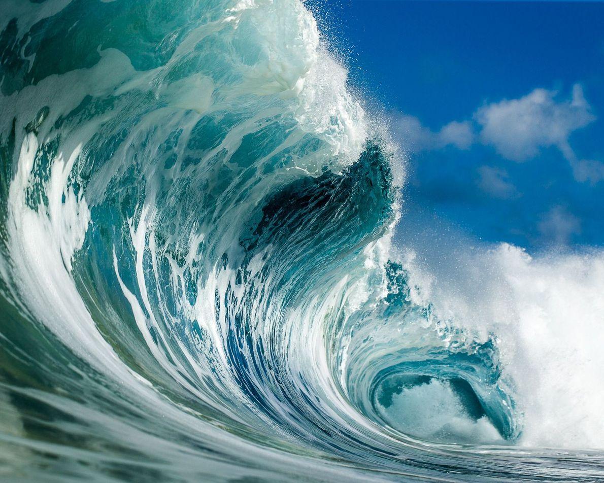 « J'adore l'océan et le considère comme ma deuxième maison. Selon moi, toutes les plages devraient ...