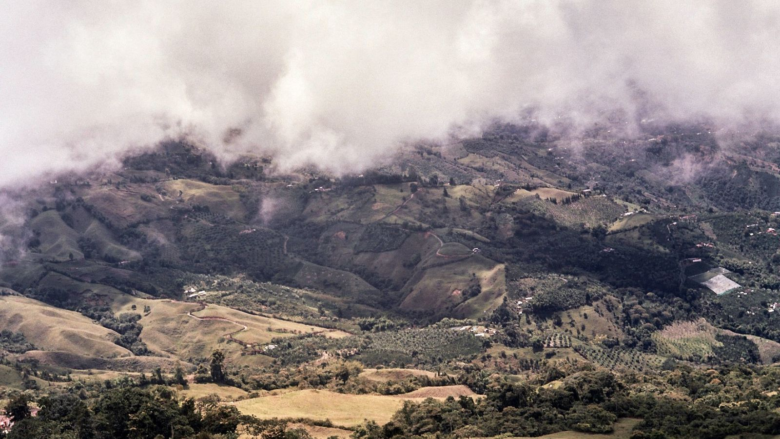 Les versants fertiles et verdoyants du Caldas font partie du Paysage Culturel du Café de la ...