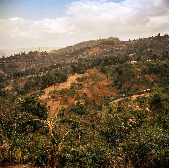 Savoir faire en Éthiopie