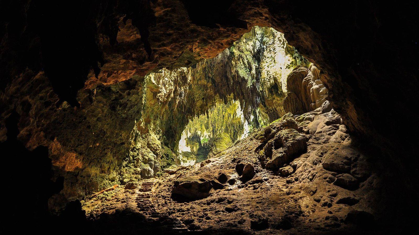 Des chercheurs ont mené des recherches dans la grotte de Callao, aux Philippines, et y ont ...