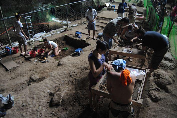 Les chercheurs creusent soigneusement plusieurs centimètres d'argile épaisse - l'excavation a été menée 2011 dans la ...