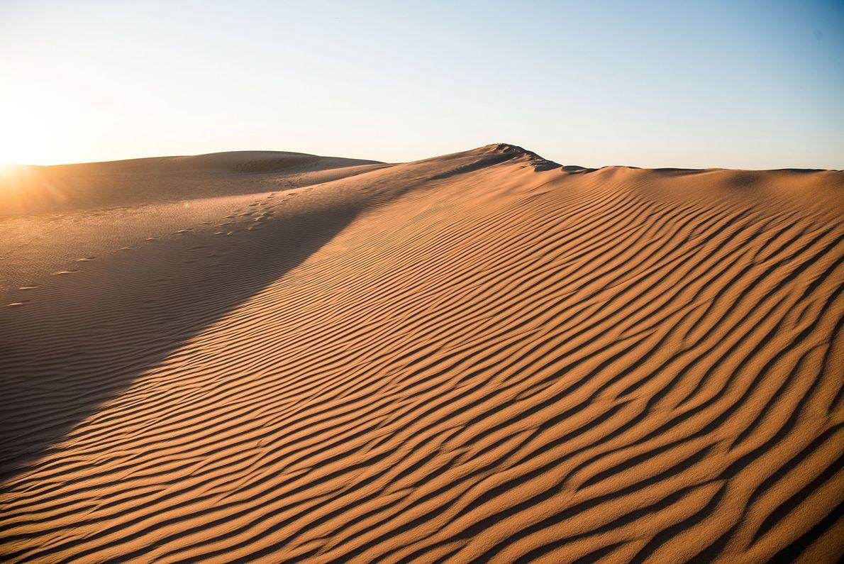 Les dunes de sable dessinent le paysage du parc national Mungo.
