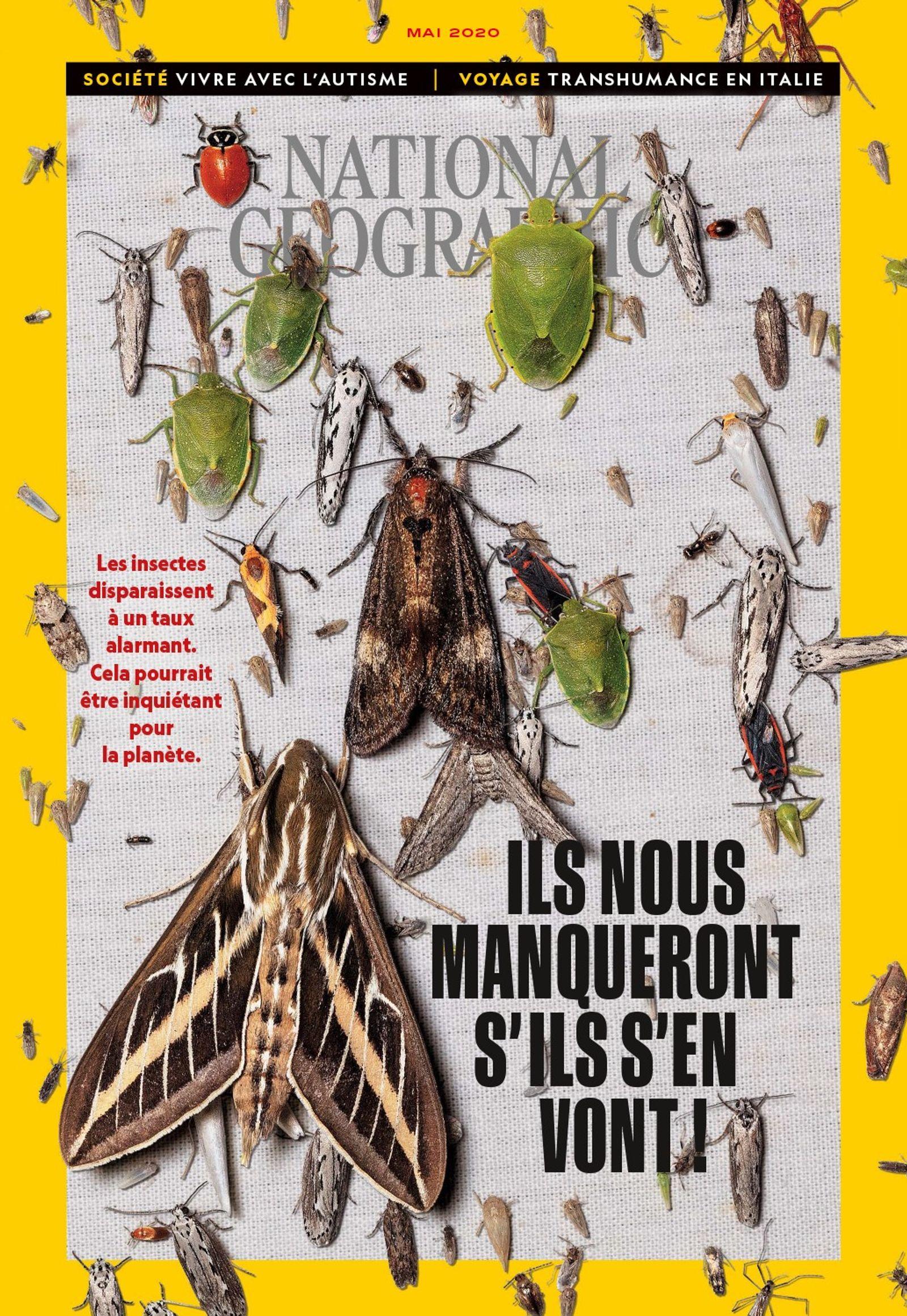Sommaire du magazine National Geographic de mai 2020 : Insectes, ils nous manqueront s'ils s'en vont
