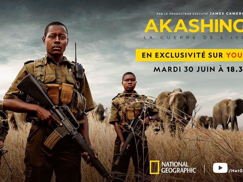 AKASHINGA : La guerre de l'ivoire | Trailer