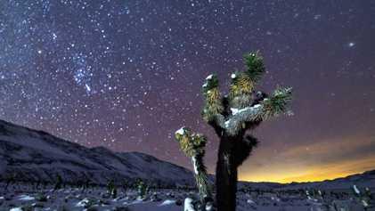 La vallée de la Mort immortalisée sous un ciel étoilé