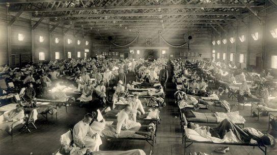 Les premiers cas officiels de grippe espagnole ont été enregistrés en 1918 au camp Funston de ...