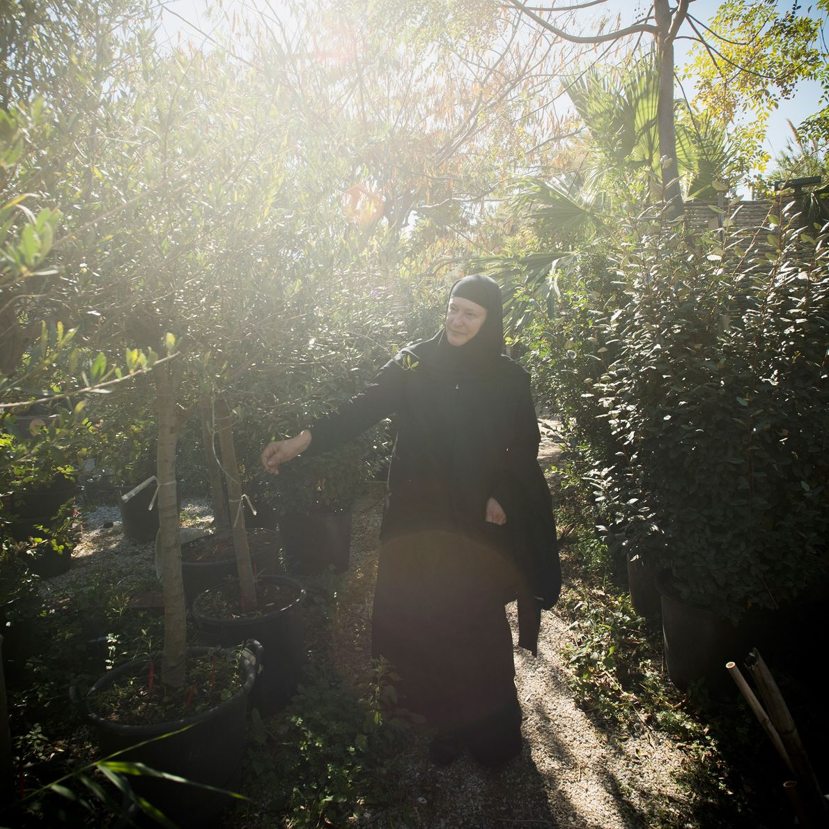 Sœur Irini examine des plantes de pépinière à Katapola, un village voisin. Après s'être rendue pour ...