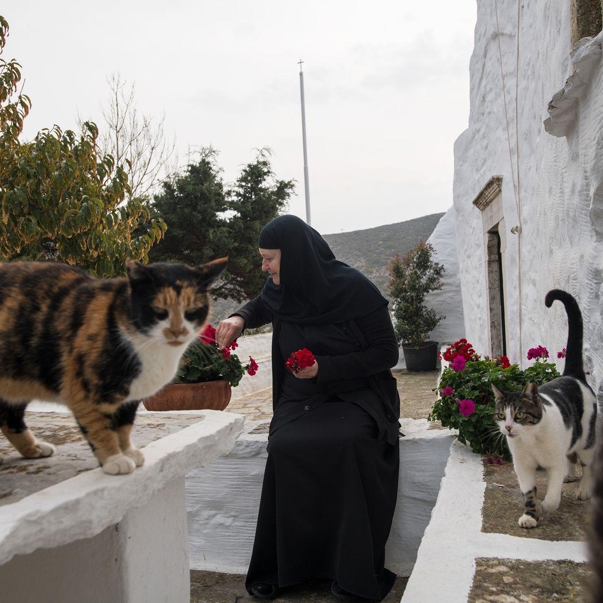 Sœur Irini s'occupe de ses plantes au monastère, qu'elle a restauré elle-même.