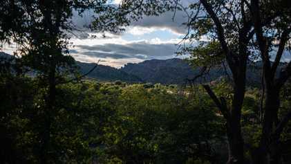 Dans l'Arizona, ce site amérindien sacré va être cédé à une société minière