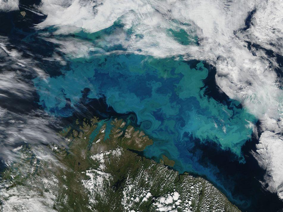 Le changement climatique pourrait changer la couleur des océans