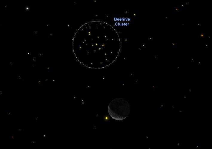 Le 4 octobre, vous distinguerez plus facilement La Ruche, un amas d'étoiles grâce au croissant de ...