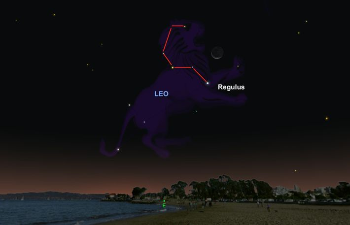 Le 5 octobre, levez les yeux au ciel et cherchez la brillante étoile Régulus, qui se ...
