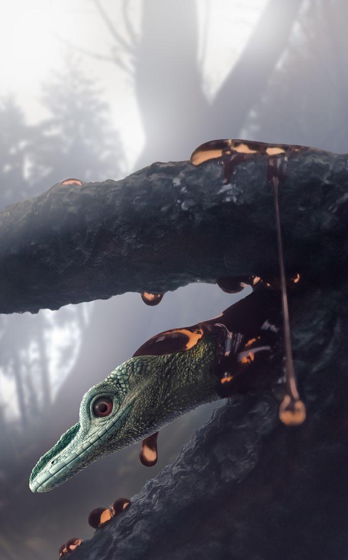 Il y a 99 millions d'années, dans l'actuel Myanmar, l'Oculudentavis khaungraae, un mystérieux animal désormais considéré ...